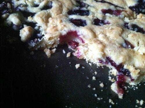 Blueberry Vinegar Cookies
