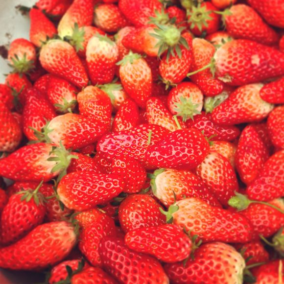 Strawberries are everywhere