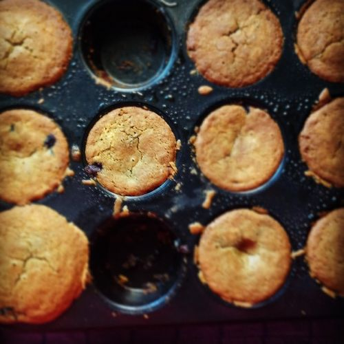 Flat topped Blueberry Muffins