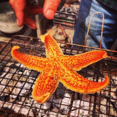 Grilled Starfish